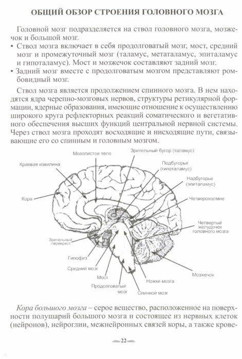 Иллюстрация 1 из 20 для Биолокация. Атлас диаграмм. Методическое пособие для диагностики - О. Лобышева | Лабиринт - книги. Источник: Лабиринт