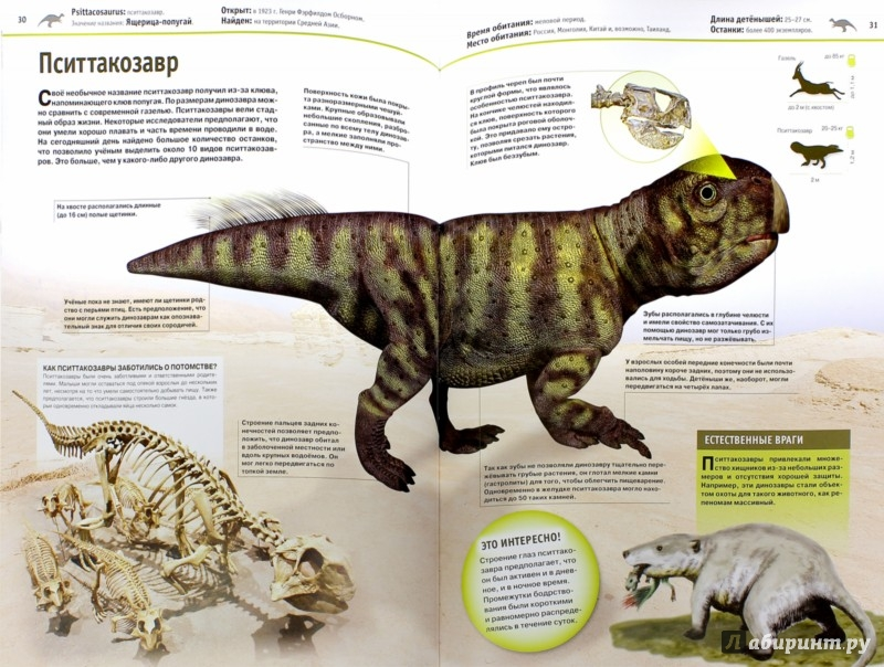 Иллюстрация 1 из 21 для Динозавры - Виктория Владимирова   Лабиринт - книги. Источник: Лабиринт