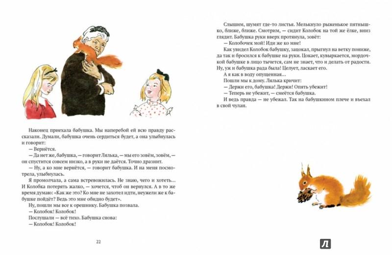 Иллюстрация 5 из 55 для Бабушкин колобок - Елена Верейская | Лабиринт - книги. Источник: Лабиринт