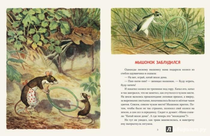 Иллюстрация 1 из 44 для Мышонок заблудился - Нина Павлова | Лабиринт - книги. Источник: Лабиринт