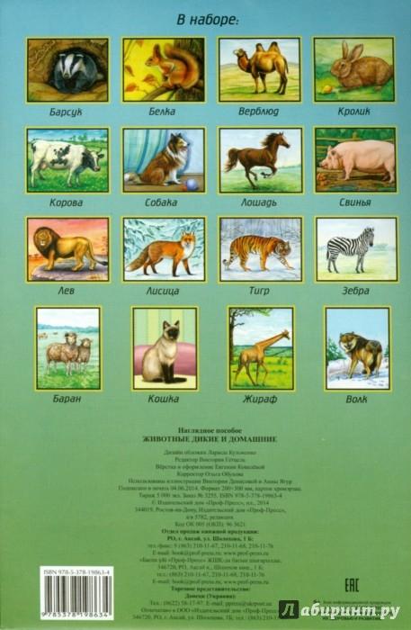 Иллюстрация 1 из 7 для Наглядное пособие А4. Животные дикие и домашние | Лабиринт - книги. Источник: Лабиринт
