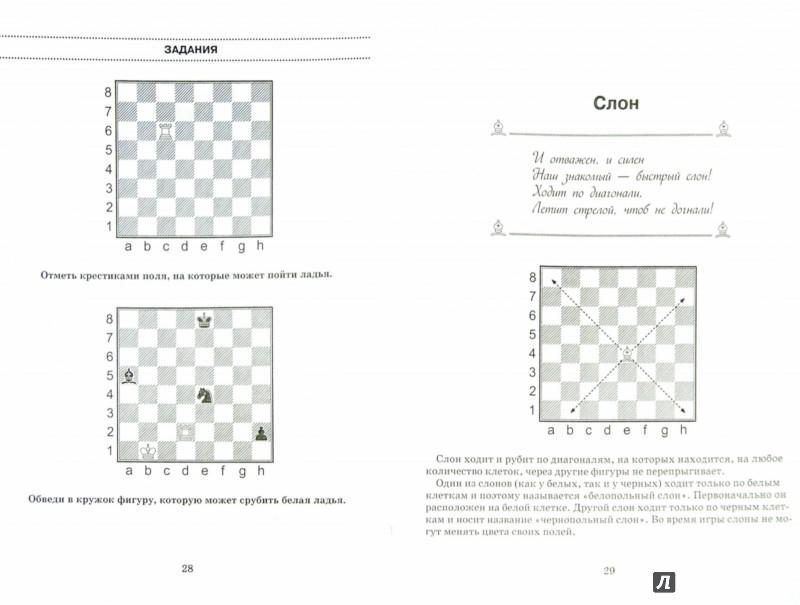 Иллюстрация 1 из 7 для Шахматная тетрадь-раскраска. Рисуем, учимся, играем - Антонина Трофимова   Лабиринт - книги. Источник: Лабиринт