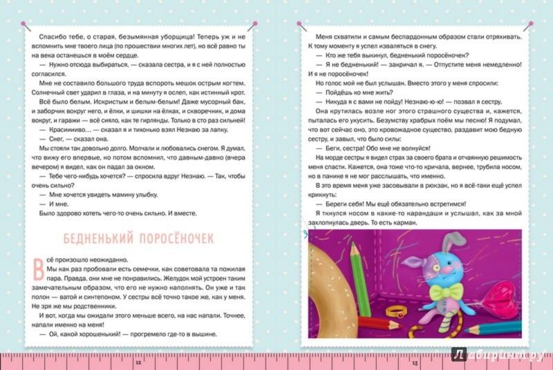 Иллюстрация 1 из 19 для Невероятные приключения Лоскутикова - Анна Никольская | Лабиринт - книги. Источник: Лабиринт