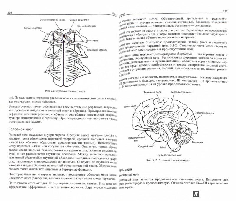 Иллюстрация 1 из 32 для ЕГЭ по биологии. Практическая подготовка - Дмитрий Соловков | Лабиринт - книги. Источник: Лабиринт