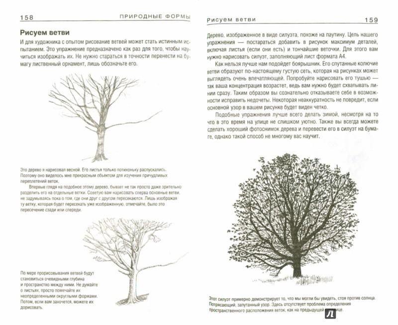 Иллюстрация 1 из 25 для Как нарисовать все что угодно - Баррингтон Барбер | Лабиринт - книги. Источник: Лабиринт