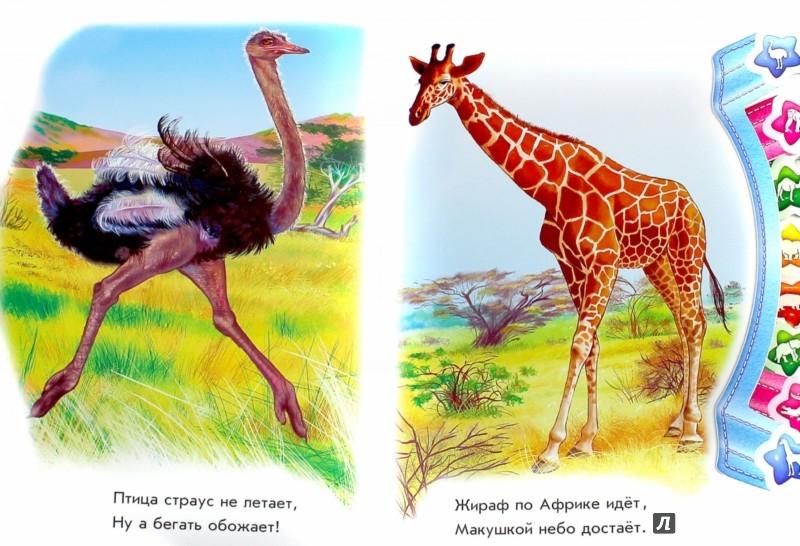 Иллюстрация 1 из 19 для В Африке - Олеся Квитка | Лабиринт - книги. Источник: Лабиринт