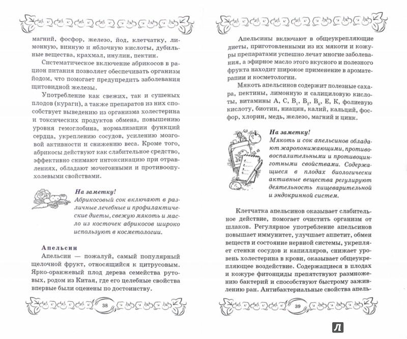Иллюстрация 1 из 3 для Щелочная диета. Эффективное похудение и очищение организма от шлаков и токсинов - М. Василенко | Лабиринт - книги. Источник: Лабиринт