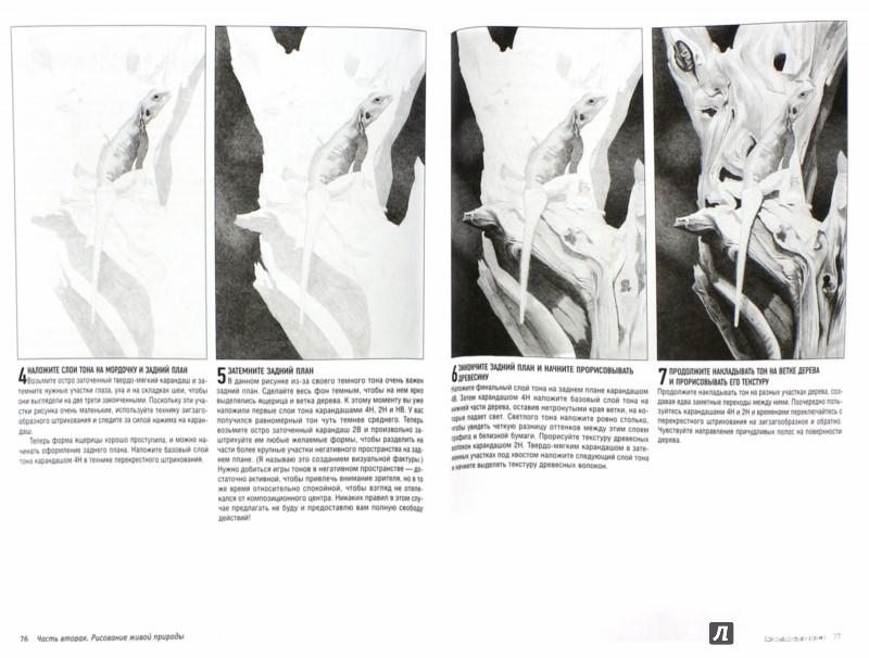 Иллюстрация 1 из 9 для Реалистичные рисунки животных - Роберт Колдуэлл | Лабиринт - книги. Источник: Лабиринт