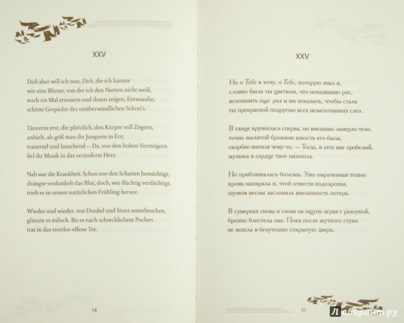Иллюстрация 1 из 5 для Сонеты к Орфею - Райнер Рильке | Лабиринт - книги. Источник: Лабиринт