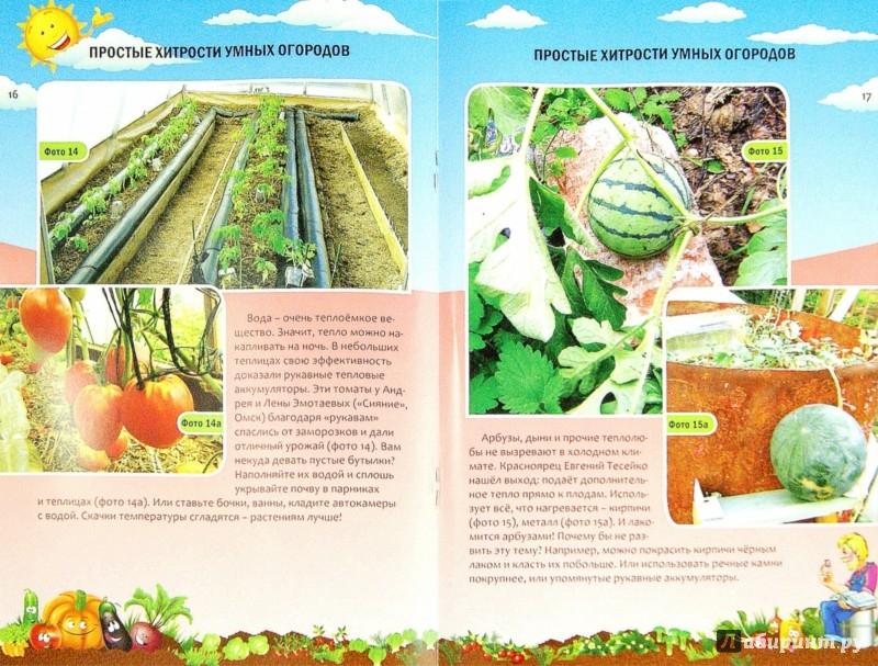 Иллюстрация 1 из 7 для Простые хитрости умных огородов - Николай Курдюмов | Лабиринт - книги. Источник: Лабиринт