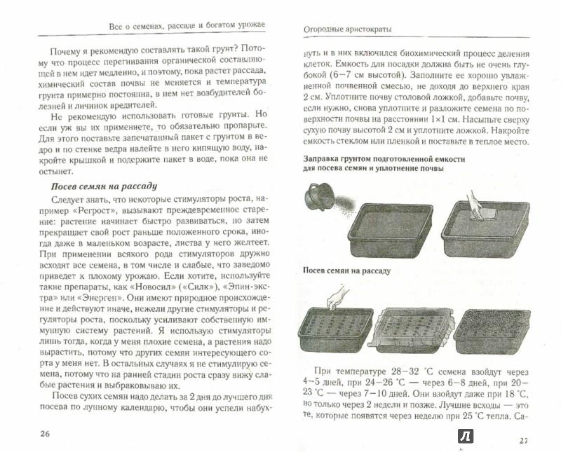 Иллюстрация 1 из 3 для Рассада и семена. Все, что нужно для богатого урожая - Галина Кизима | Лабиринт - книги. Источник: Лабиринт