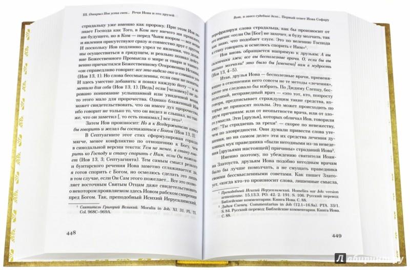Иллюстрация 1 из 9 для Возлюбивший Христа. Святоотеческие толкования на книгу Иова - Петр Малков | Лабиринт - книги. Источник: Лабиринт