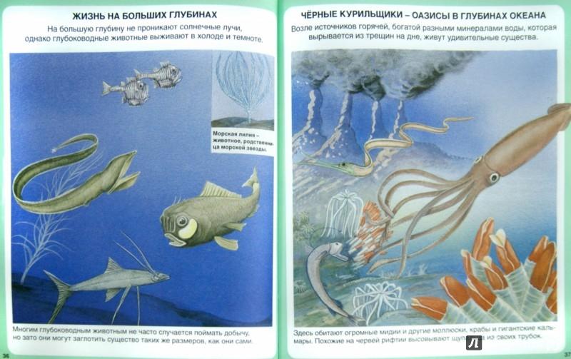 Иллюстрация 1 из 44 для Тайны моря | Лабиринт - книги. Источник: Лабиринт