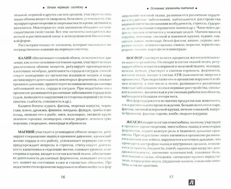 Иллюстрация 1 из 5 для Лечим нервную систему - Галина Сергеева | Лабиринт - книги. Источник: Лабиринт