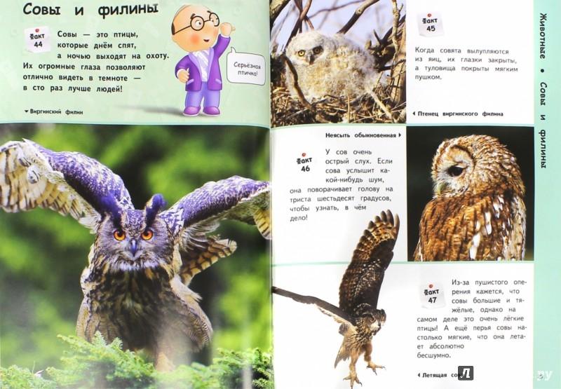 Иллюстрация 1 из 25 для Самые невероятные факты | Лабиринт - книги. Источник: Лабиринт