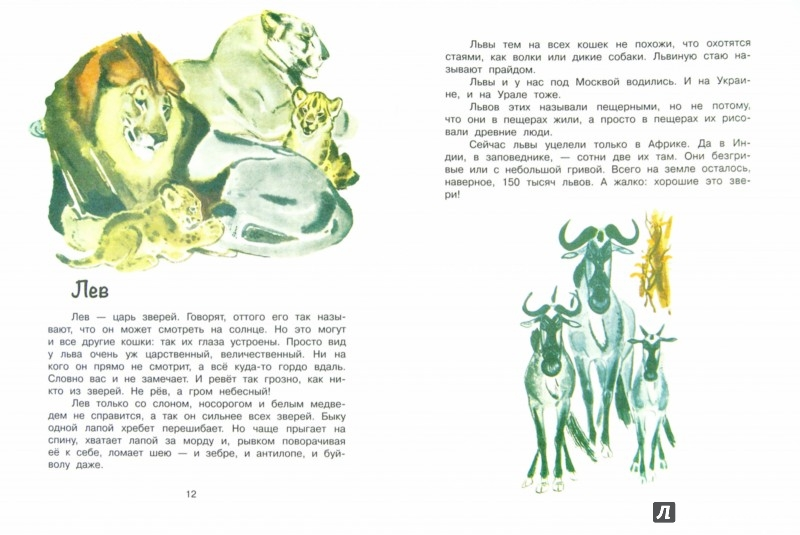 Иллюстрация 1 из 39 для Это все кошки - Игорь Акимушкин | Лабиринт - книги. Источник: Лабиринт