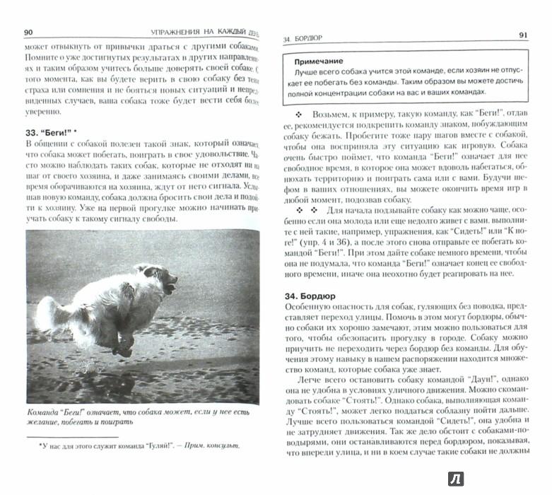 Иллюстрация 1 из 14 для 100 игр и упражнений для вашей собаки - Амо Дель | Лабиринт - книги. Источник: Лабиринт