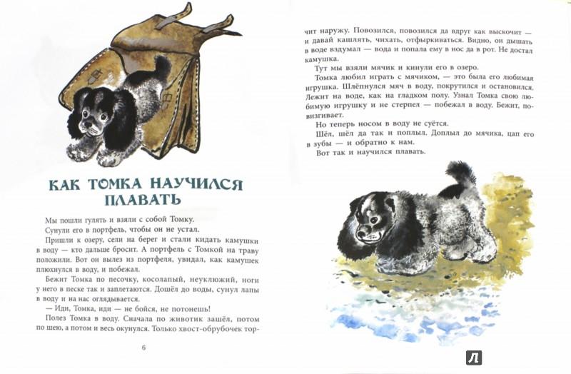 Иллюстрация 1 из 42 для Томкины сны - Евгений Чарушин | Лабиринт - книги. Источник: Лабиринт