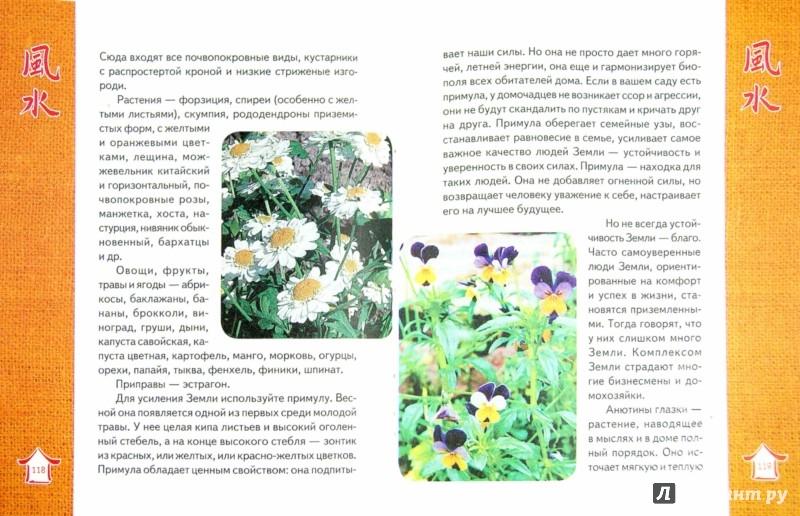 Иллюстрация 1 из 21 для Фэн Шуй. Цветущий сад | Лабиринт - книги. Источник: Лабиринт
