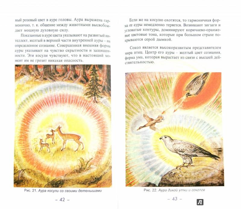 Иллюстрация 1 из 8 для Космоэнергетика. Аура и цвет - Александр Беркович | Лабиринт - книги. Источник: Лабиринт