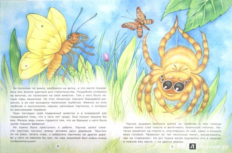 Иллюстрация 1 из 24 для Мастер паучок - Лариса Тарасенко | Лабиринт - книги. Источник: Лабиринт