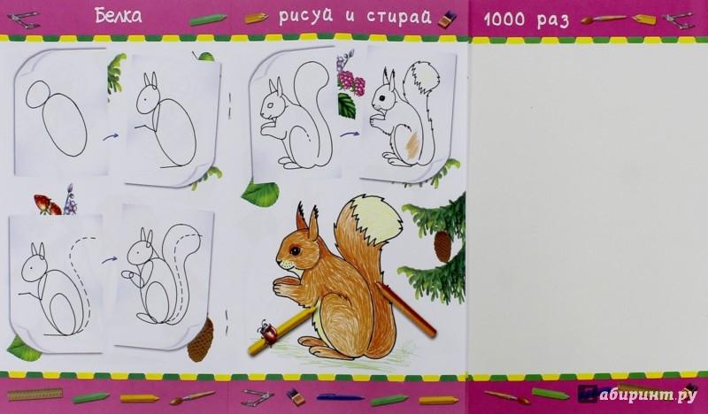 Иллюстрация 1 из 6 для Учимся рисовать. Для девочек | Лабиринт - книги. Источник: Лабиринт