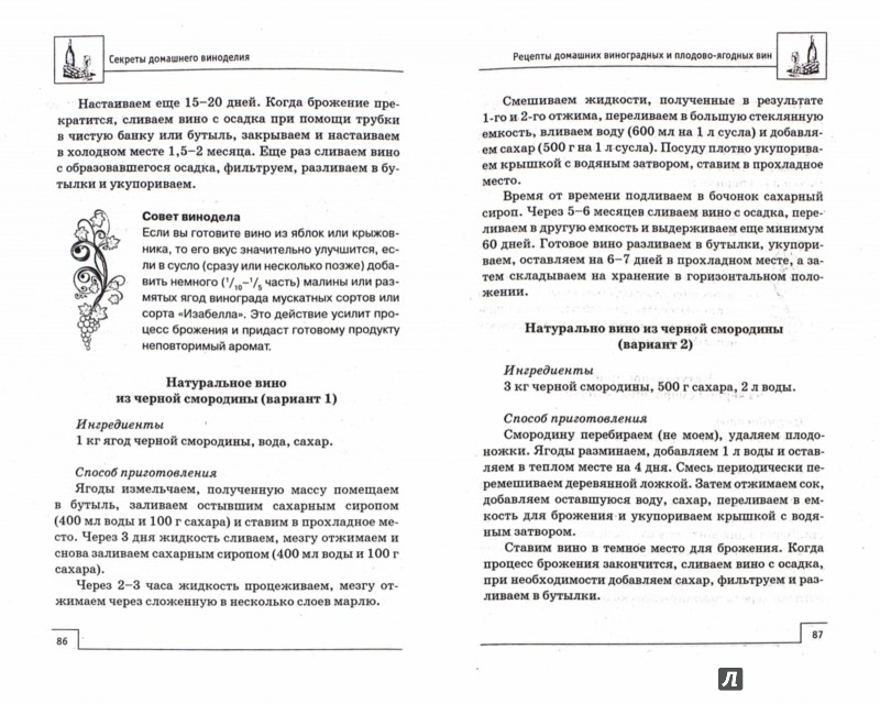 Иллюстрация 1 из 25 для Секреты домашнего виноделия - А. Шумов | Лабиринт - книги. Источник: Лабиринт