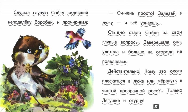 Иллюстрация 1 из 5 для Сойка и лягушонок - Николай Красильников | Лабиринт - книги. Источник: Лабиринт