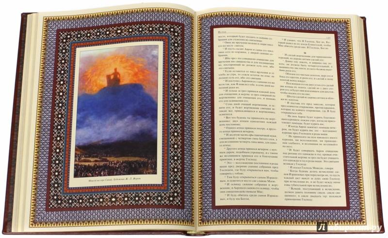 Иллюстрация 1 из 13 для Иллюстрированная Библия (кожа) | Лабиринт - книги. Источник: Лабиринт