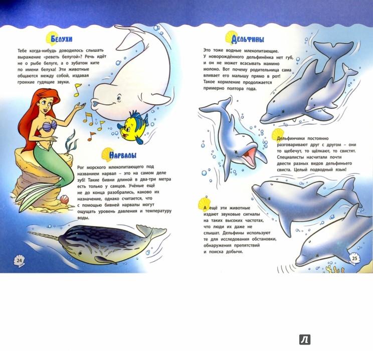 Иллюстрация 1 из 14 для Морские обитатели с Ариэль | Лабиринт - книги. Источник: Лабиринт