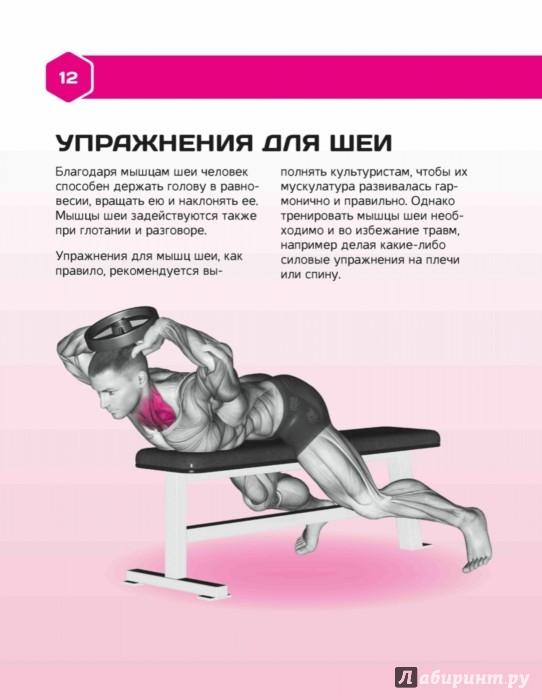 Иллюстрация 1 из 14 для Конструктор тела. Силовые и фитнес-тренировки - Александр Донцов | Лабиринт - книги. Источник: Лабиринт