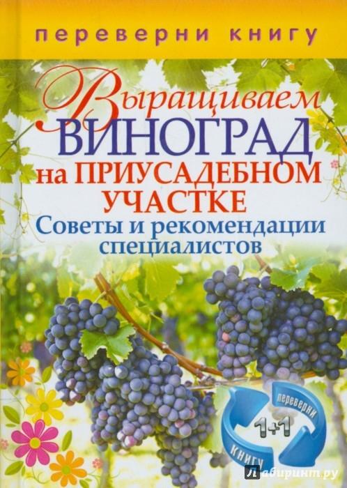 Иллюстрация 1 из 2 для Выращиваем овощи в теплицах и парниках. Выращиваем виноград на приусадебном участке   Лабиринт - книги. Источник: Лабиринт