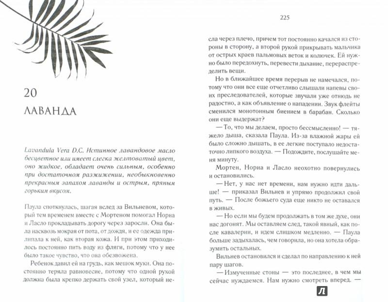 Иллюстрация 1 из 15 для Затерянный остров - Беатрикс Маннель | Лабиринт - книги. Источник: Лабиринт