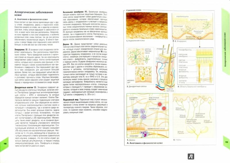 Иллюстрация 1 из 17 для Наглядная аллергология - Рекен, Бургдорф, Греверс | Лабиринт - книги. Источник: Лабиринт