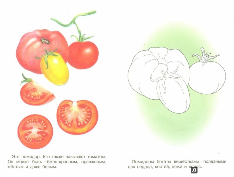 Иллюстрация 1 из 18 для Раскраска. Раскрашиваем и учимся. Овощи | Лабиринт - книги. Источник: Лабиринт