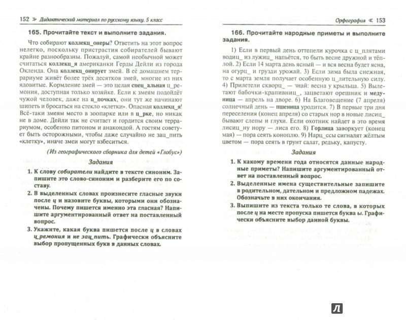 Иллюстрация 1 из 9 для Дидактический материал по русскому языку. 5 класс - Людмила Ларионова | Лабиринт - книги. Источник: Лабиринт