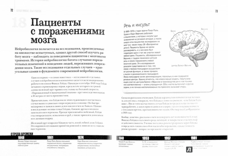 Иллюстрация 1 из 21 для Мозг человека. 50 идей, о которых нужно знать - Мохеб Костанди | Лабиринт - книги. Источник: Лабиринт