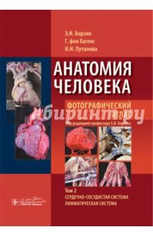Анатомия человека. Фотографический атлас. В 3-х томах. Том 2. Сердечно-сосудистая система шилкин в филимонов в анатомия по пирогову атлас анатомии человека том 1 верхняя конечность нижняя конечность cd
