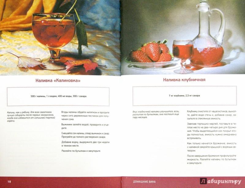 Иллюстрация 1 из 9 для Домашние вина - Наталия Потапова | Лабиринт - книги. Источник: Лабиринт