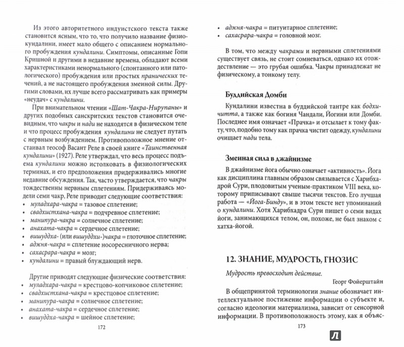 Иллюстрация 1 из 6 для Психология йоги. Объединение восточного и западного подходов к изучению ума - Георг Фойерштейн   Лабиринт - книги. Источник: Лабиринт