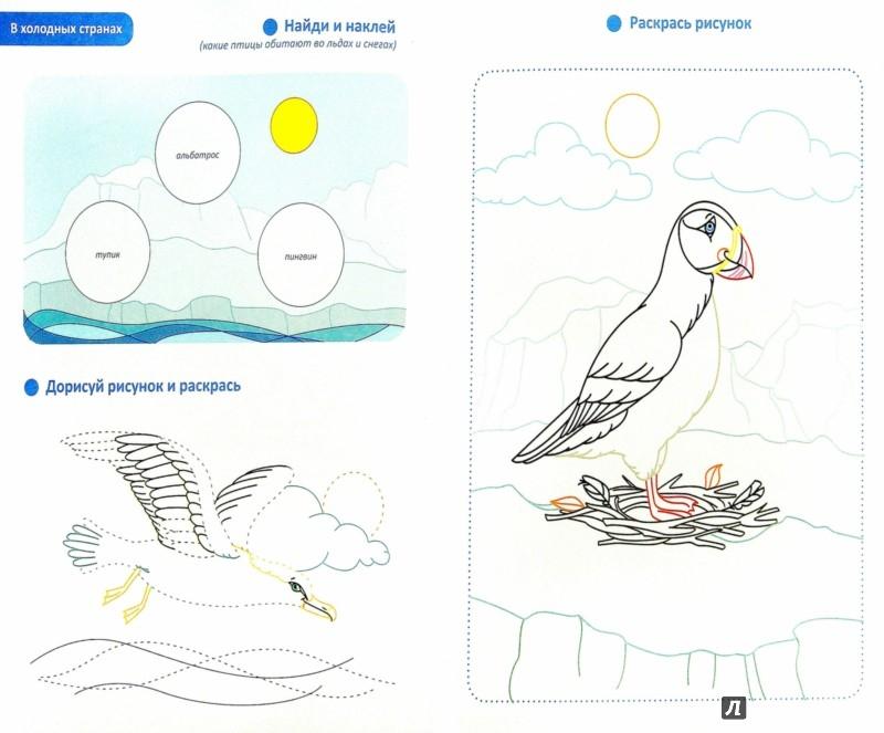 Иллюстрация 1 из 12 для Птицы. Кто где обитает. Обучающая раскраска с наклейками | Лабиринт - книги. Источник: Лабиринт