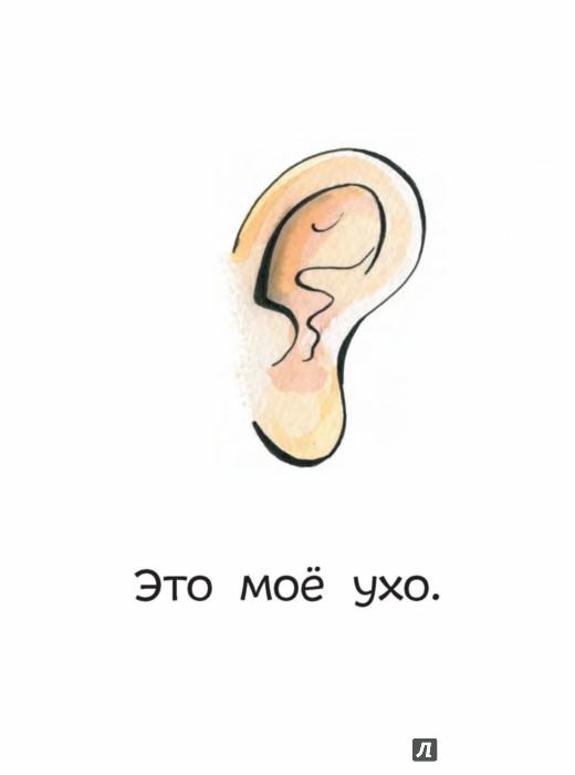Иллюстрация 1 из 53 для Чей бок? 8 книг для первого чтения - Татьяна Руссита | Лабиринт - книги. Источник: Лабиринт