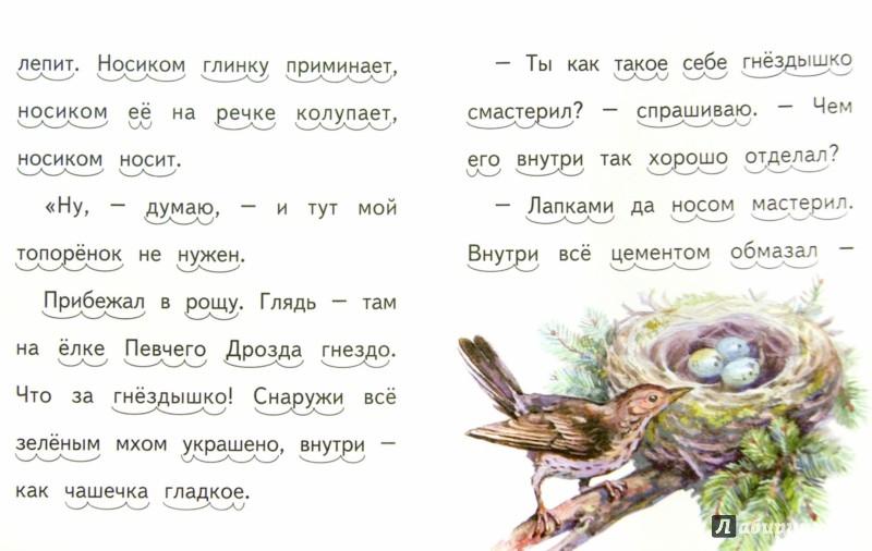 Иллюстрация 1 из 18 для Мастера без топора - Виталий Бианки | Лабиринт - книги. Источник: Лабиринт