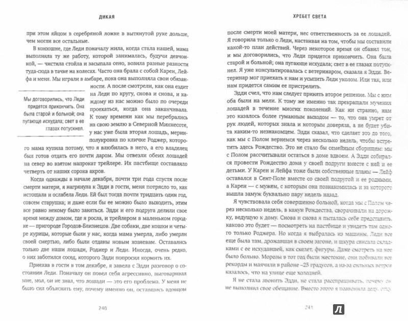Иллюстрация 1 из 23 для Дикая. Опасное путешествие - Шерил Стрэйд | Лабиринт - книги. Источник: Лабиринт