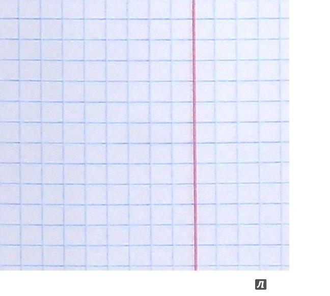 Иллюстрация 1 из 4 для Тетрадь. 18 листов. Fabric Animals (30622-FA/12) | Лабиринт - канцтовы. Источник: Лабиринт