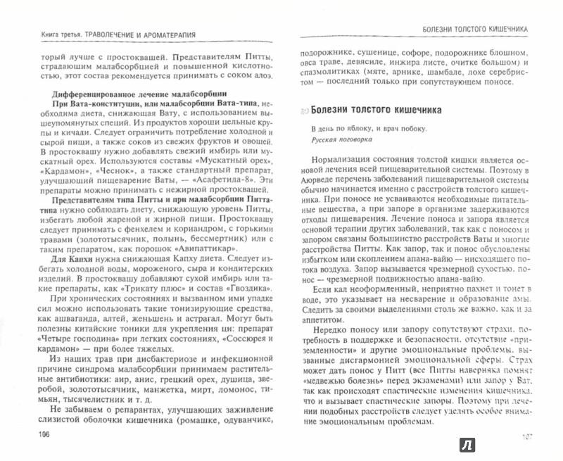 Иллюстрация 1 из 28 для Аюрведа. Траволечение и ароматерапия - Ян Раздобурдин | Лабиринт - книги. Источник: Лабиринт