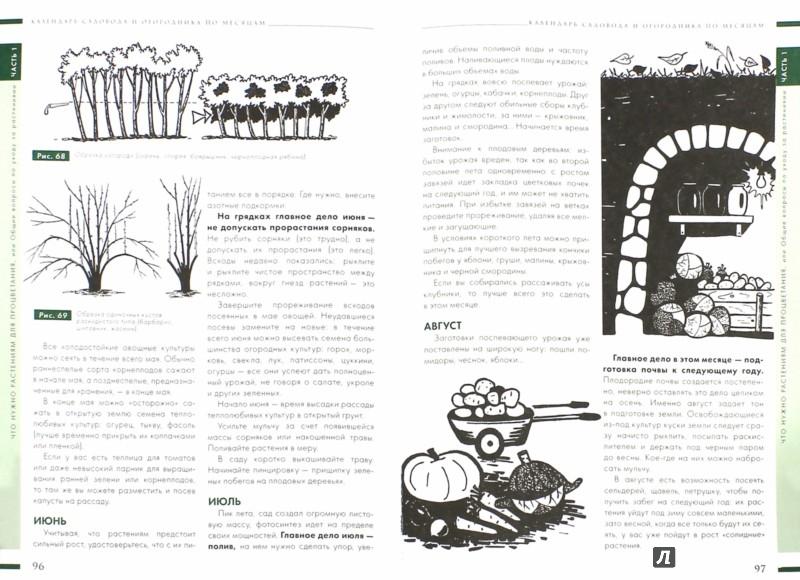 Иллюстрация 1 из 6 для Настольная книга садовода и огородника - Павел Траннуа | Лабиринт - книги. Источник: Лабиринт