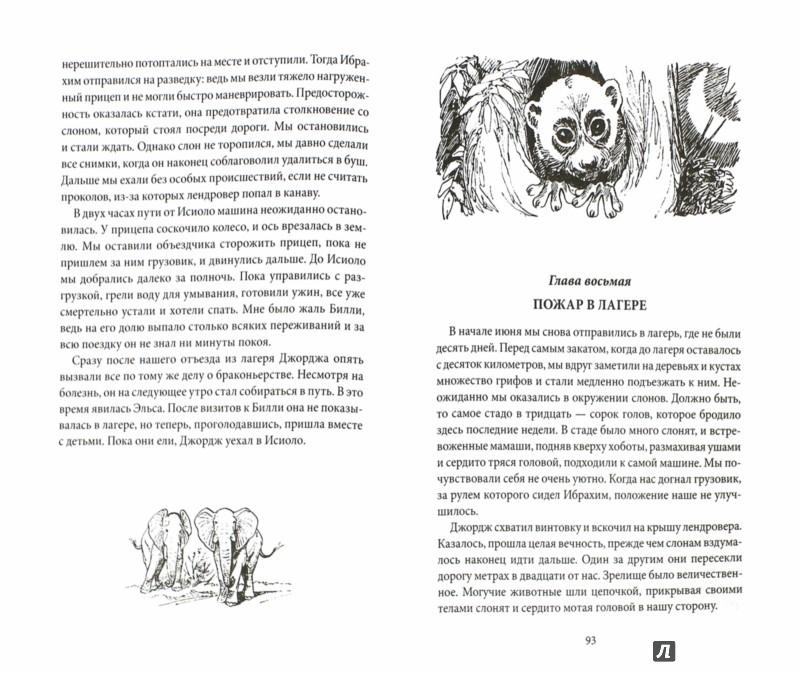 Иллюстрация 1 из 37 для Живущая свободной - Джой Адамсон | Лабиринт - книги. Источник: Лабиринт