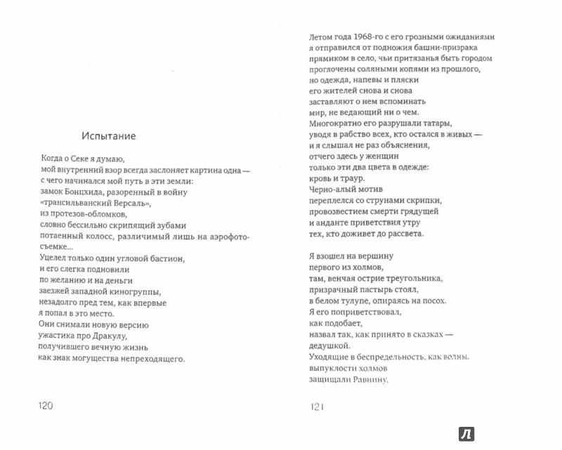 Иллюстрация 1 из 9 для Неведомой сути забытые грани... Из современной венгерской поэзии | Лабиринт - книги. Источник: Лабиринт