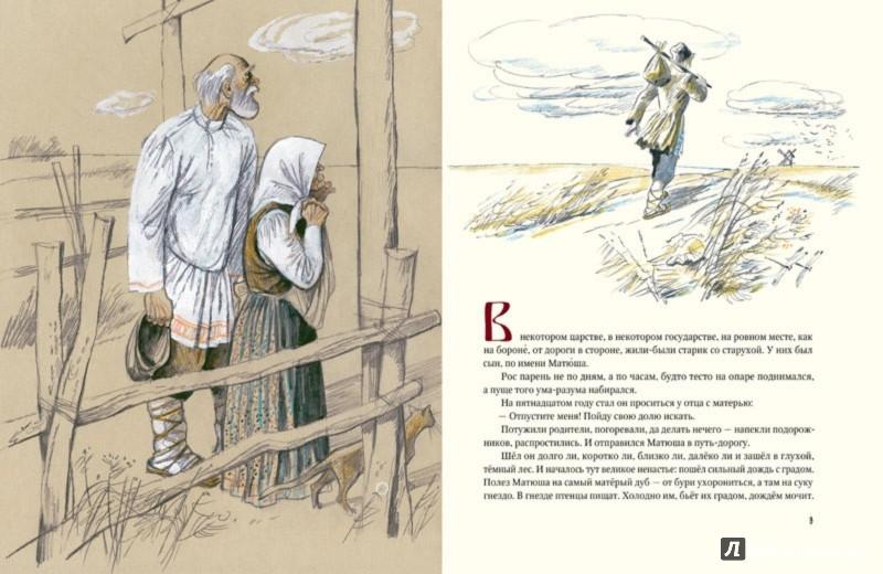 Иллюстрация 1 из 43 для Матюша Пепельной | Лабиринт - книги. Источник: Лабиринт
